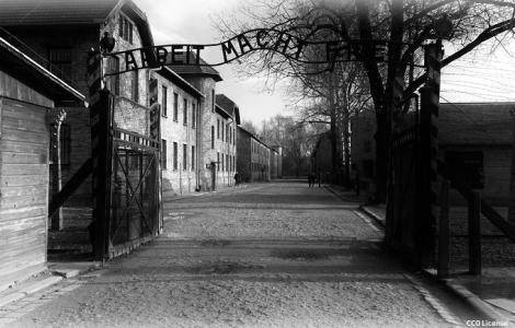 Auschwitz - Kraków