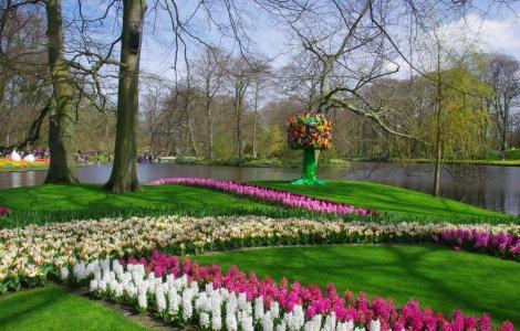 Festiwal Kwiatów Holandia