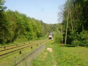 Wycieczka Malbork