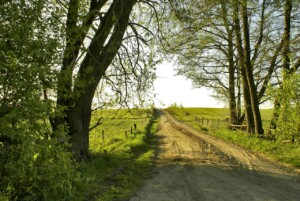 Wycieczka na Podlasie