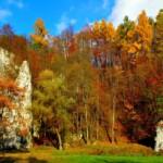 Wycieczka Oświęcim Ojcowski Park Narodowy