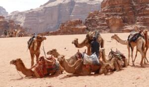 Pielgrzymka do Jordanii i Ziemi Świętej pustynia wadi rum Pixabay License