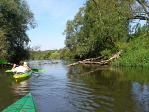 Kajakiem po Kanale Elbląskim